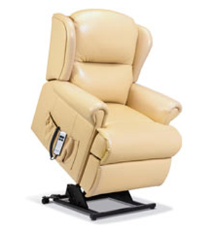 Madrid Standard Single Motor Electric Lift & Rise Recliner in leather-0