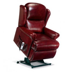 Madrid Standard Dual Motor Electric Lift & Rise Recliner in leather-0