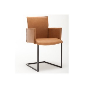 Gwinner Jule Chair with Armrests and cantilevered base