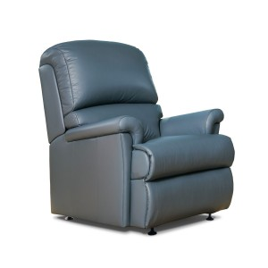 Nevada Fixed Chair in leather